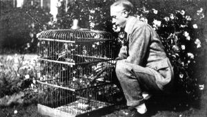 FM and bird